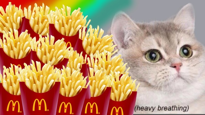 heavy breathing fries